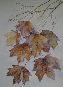Christine Mounfield:  Falling Leaves""